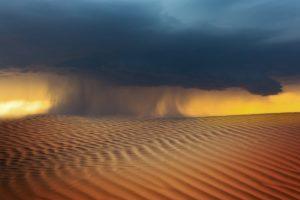 黄砂 砂漠